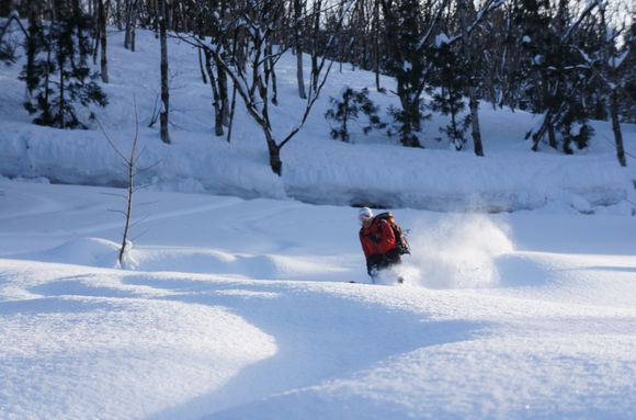 image from http://rockman.typepad.jp/.a/6a0162fdc5eeff970d017d408e7c0a970c-pi